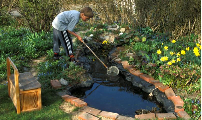Få fingrene ned i jorden og lær, hvordan du nemt kan lave et lille vandhul til stor hjælp for naturen.
